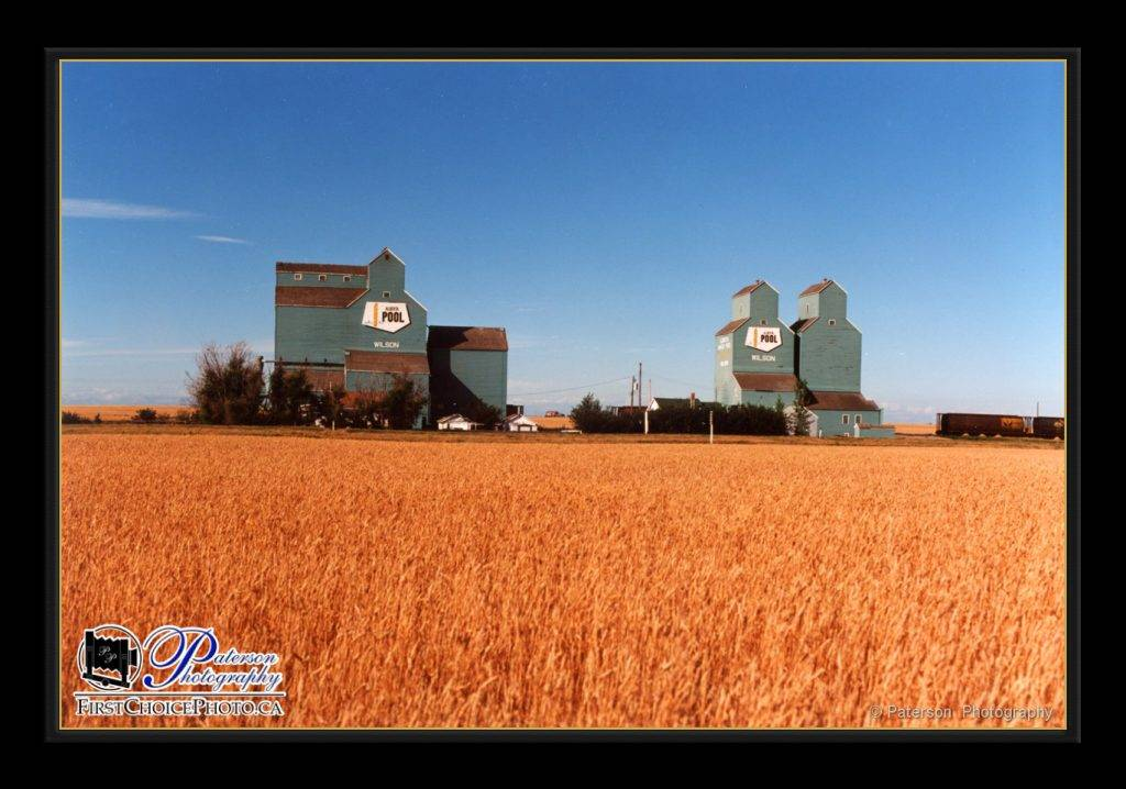 Wilson Grain elevators agriculture photography